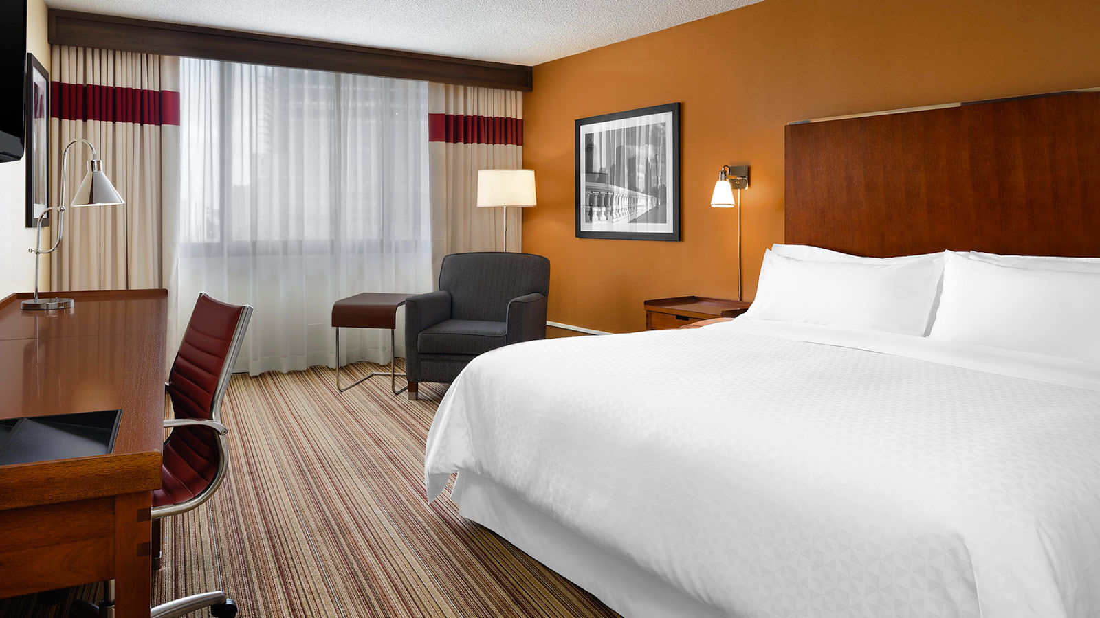 Hotels Near Texas Medical Center