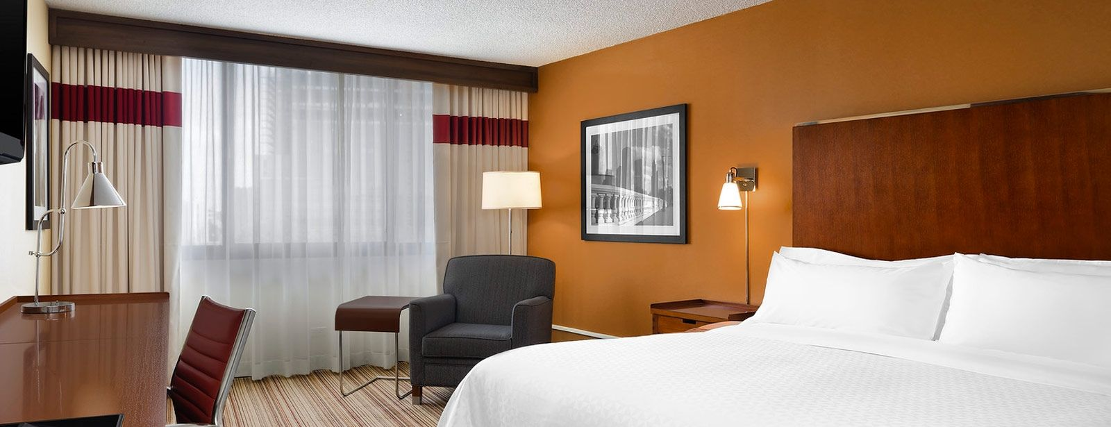 Houston Accommodations - Accessible Guest Room